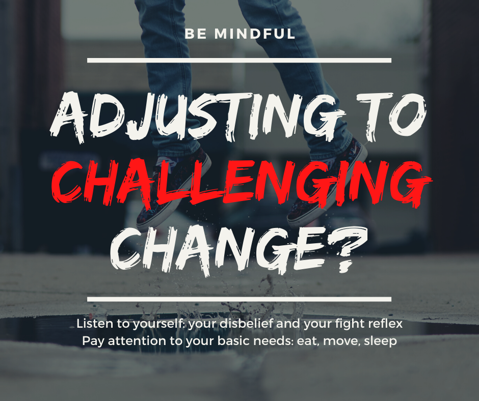 Adjusting to challenging change