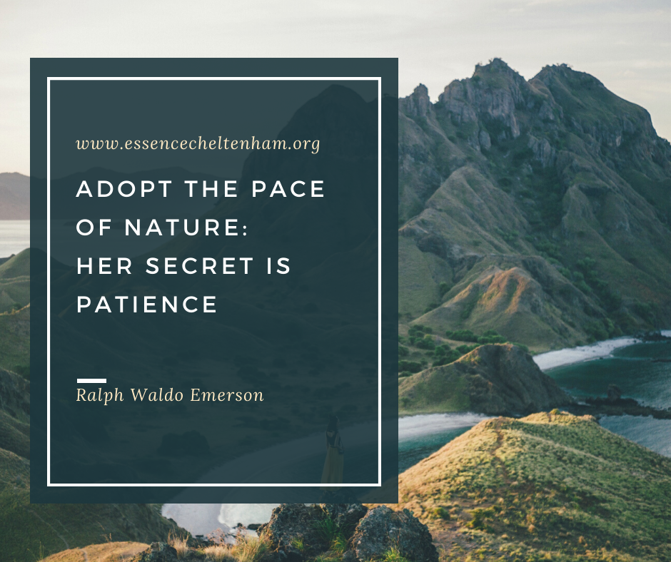 adopt the pace of nature_ her secret is patience