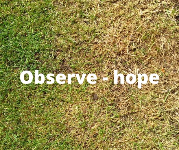 observe hope